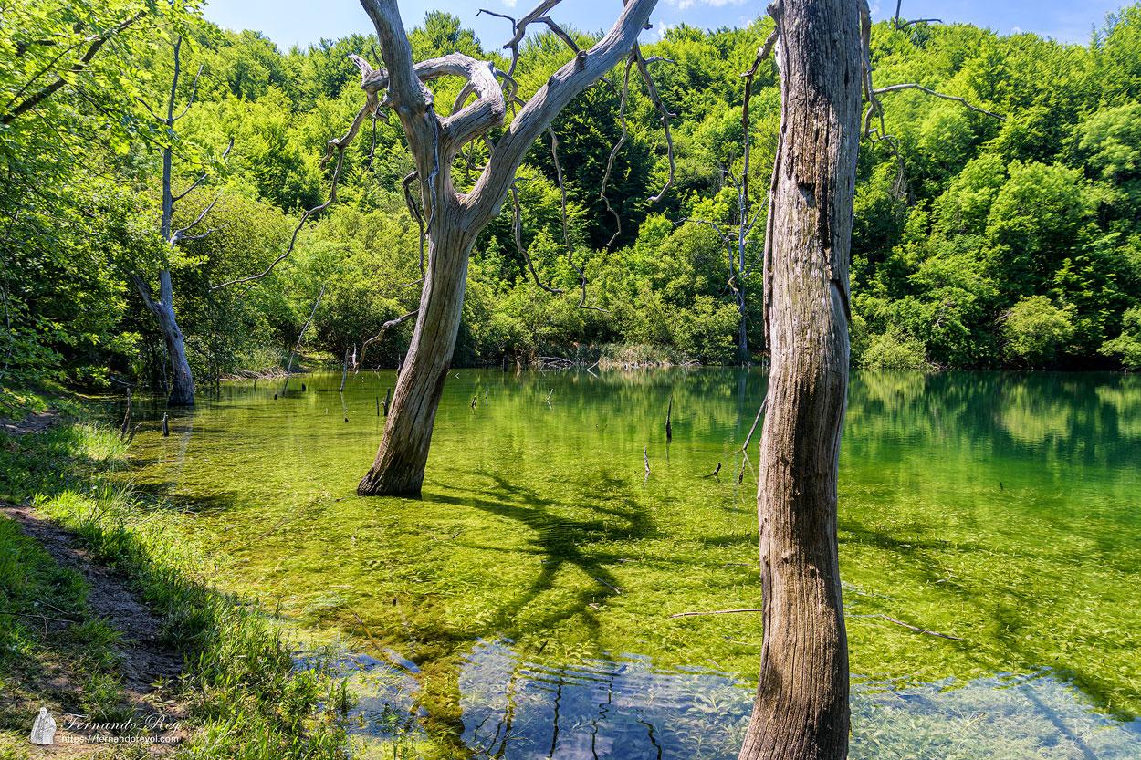 Laguna de Lamioxin